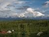 5-Sterne Ausblick vom Wonder Lake Campingplatz