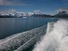 alaska-valdez-columbia-bay-glacier-1000-12