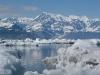 alaska-valdez-columbia-bay-glacier-1000-14