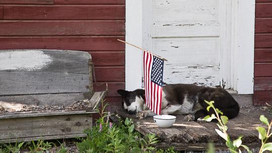 Entspannter Patriotismus ...